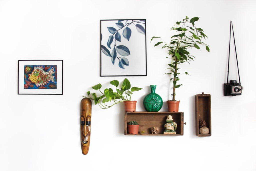 観葉植物と組み合わせて飾る
