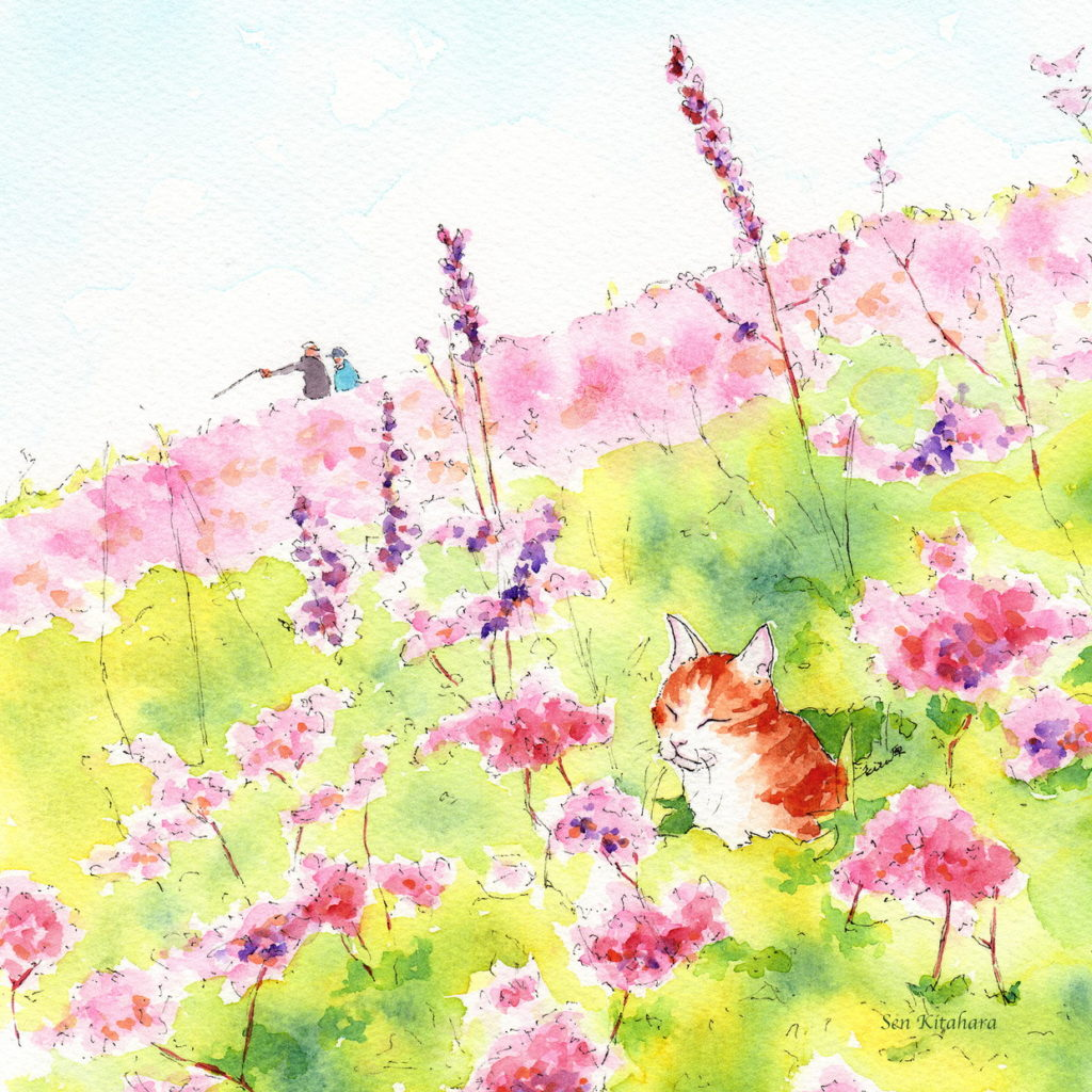 画家「北原千」の猫の絵